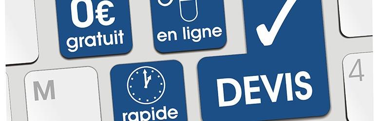 devis diagnostic termites Saint-Jean-de-Braye