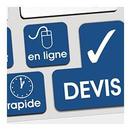 traitement des termites pas cher dans les Pays de la Loire