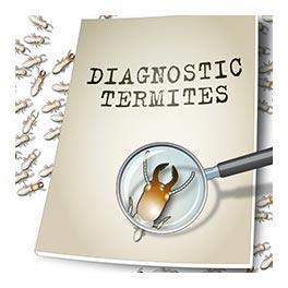 traitement des termites pas cher dans le Nord-Pas-de-Calais
